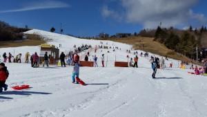 茶臼山スキー2